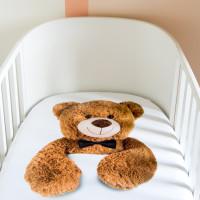 Teddy Baby Hoeslaken