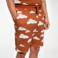 Cloud 9 Rusty Brown Shorts Men