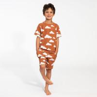 Cloud 9 Rusty Brown T-shirt & Shorts Set Kids