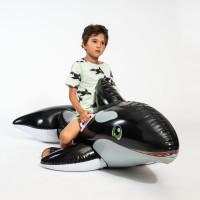 Orca Green T-shirt & Shorts Set Kinder